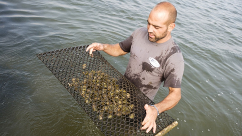 Perry Raso at his Matunuck Oyster Farm