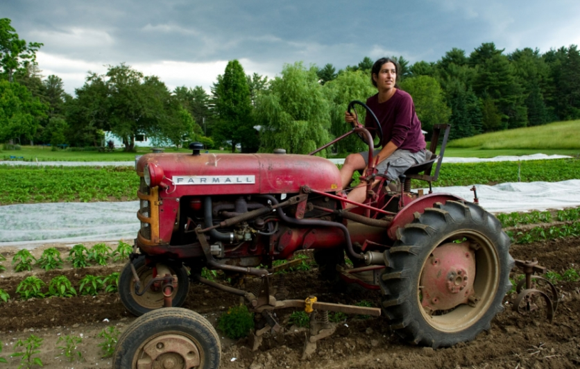 Diana Kushner driving her Farmall Cub at her farm, Arcadian Fields, in spring 2013.