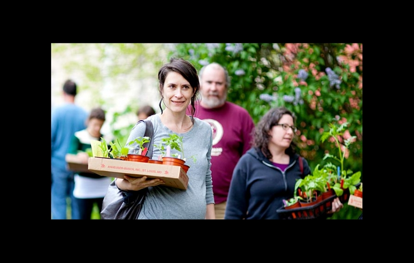 Southside community land trusts rare and unusual plant sale