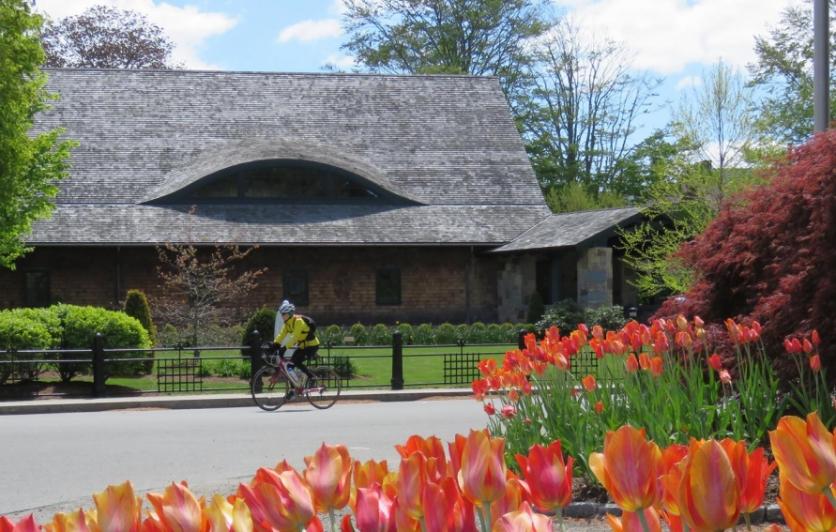 Great Freedom Adventures Bike Tour