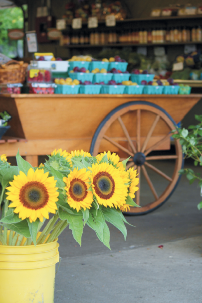 DeCastro farm store offers local produce, meat, dairy and flowers