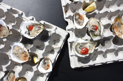 Rhode Island oysters at the Festival