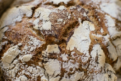 Seven Stars Bakery's sourdough loaf