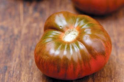 Black Tula Tomato