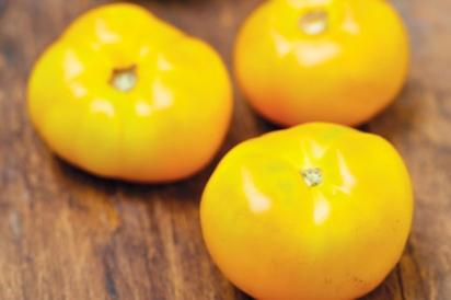 Limmony Tomato