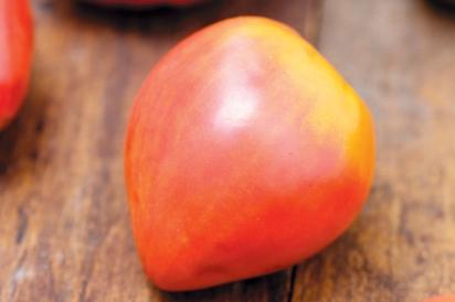 Russian Strawberry Oxheart Tomato