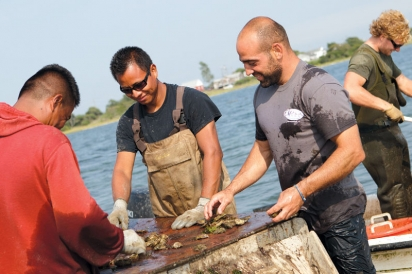 Perry and team at Matunuck Oyster Farm