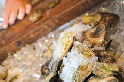 Shucking oysters at the Matunuck Oyster Bar