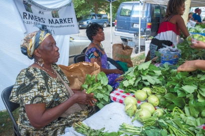 The African Alliance of Rhode Island at the Armory Farmers' Market
