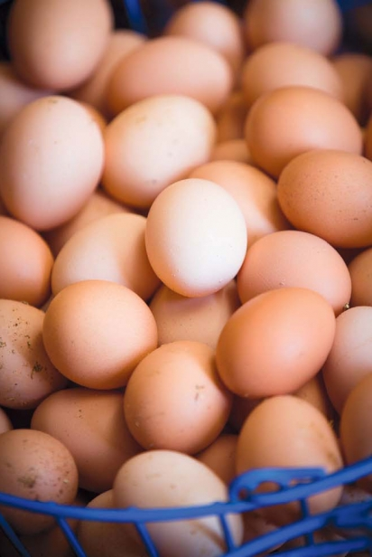 Baffoni's Poultry Farm's Eggs
