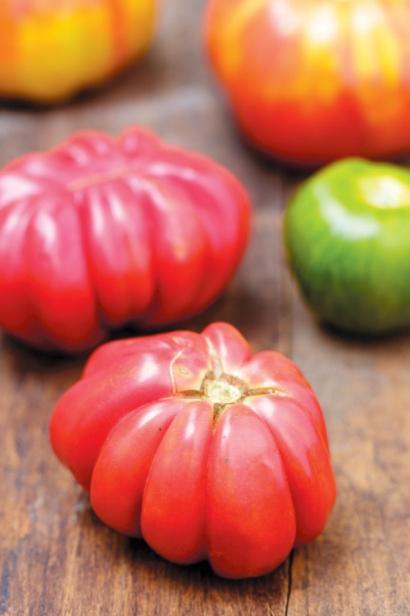 Zapotec Pink Ribbed Tomato