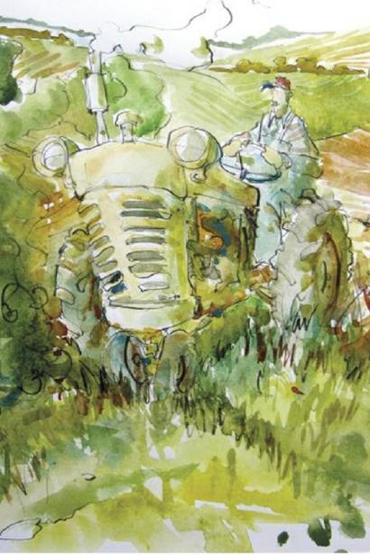 Summer Fields Illustration by Jim Bush