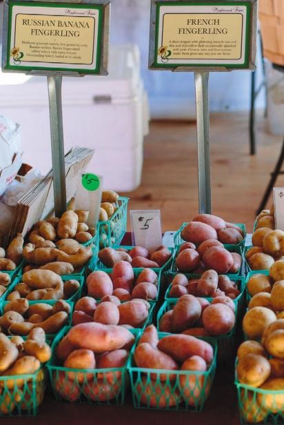 Farmers market at Mount Hope Farm