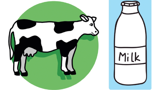 local milk illustration