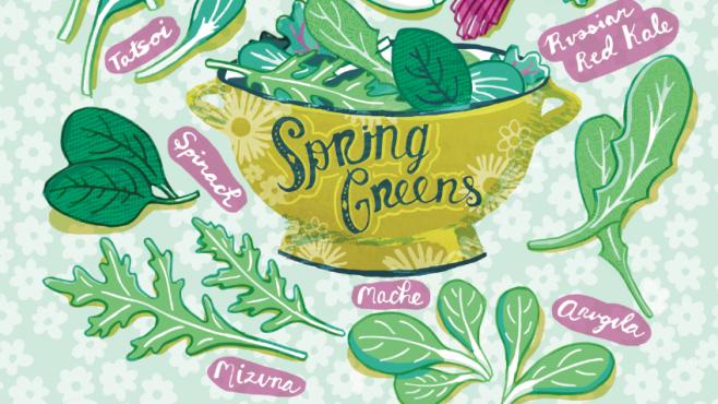 Spring greens illustration