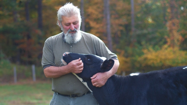 Frank Martinelli and Cow