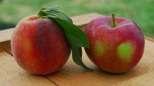 Peach and apple