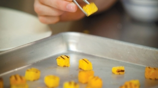 Local Squash Being Cut and Seared