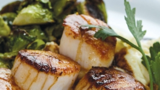 Seared Scallops with Parsnip Purée and Caramelized Brussels Sprouts